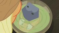Applejack staring at her soup bowl S5E20