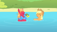 Applejack and Big Mac playing in the water S4E20