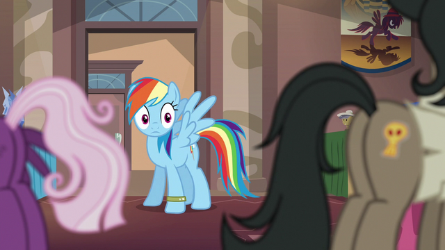 File:Rainbow thinks she found Dr. Caballeron S6E13.png