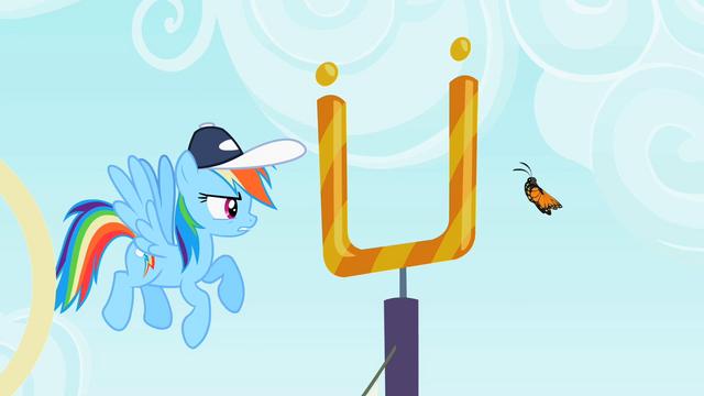 "File:Rainbow Dash ""Sorta agile"" S2E07.png"