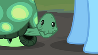 Tank smiling Rainbow Dash hooves S2E07