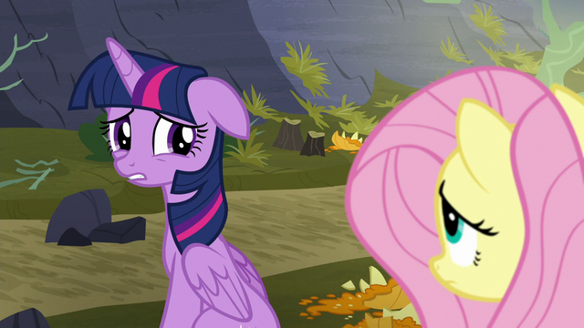 "File:Twilight ""I don't know if we can do this at all"" S5E23.png"