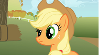 Applejack looks at Rainbow Dash with a questioning look S1E13