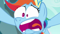 "Rainbow Dash ""never heard of the Wonderbolts?!"" S6E6"
