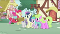 Apple Bloom playing an accordion S2E06.png
