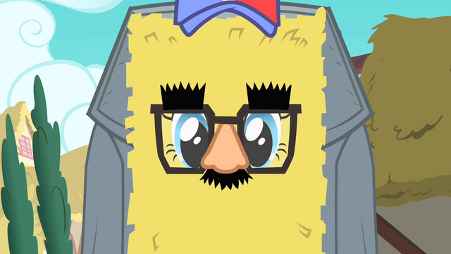 File:Pinkie Pie's disguise from Fluttershy's perspective S1E25.png