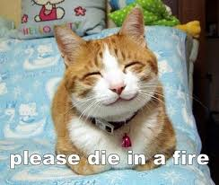 "File:""Please die in a fire"" cat image macro.jpg"