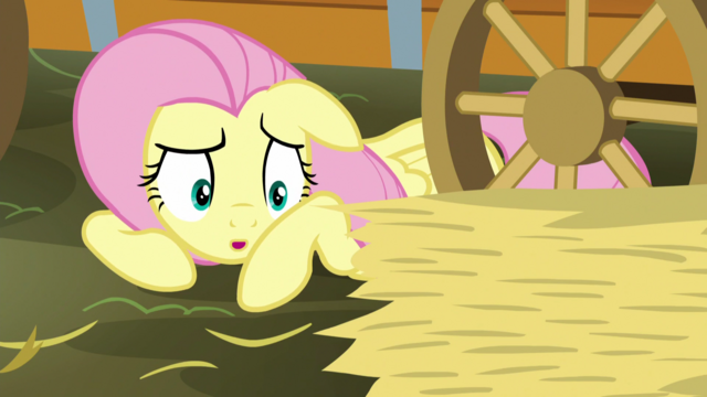 File:Fluttershy asking to borrow some hay S5E21.png