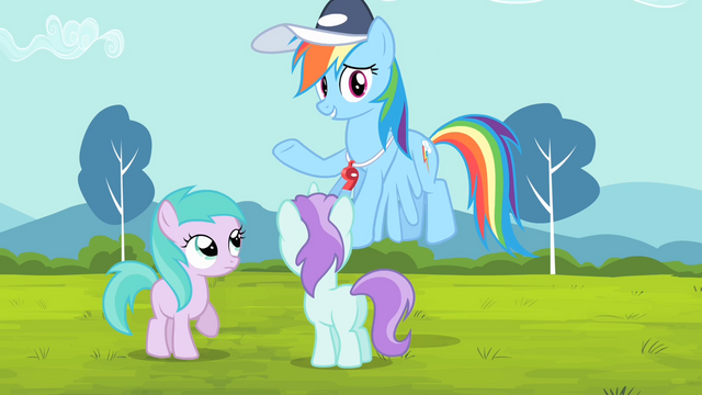 File:Rainbow '... go coach these other ponies!' S4E05.png
