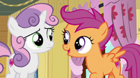 Scootaloo says yeah S6E4