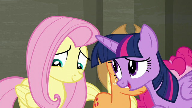 "File:Twilight Sparkle ""how much you care for animals"" S6E9.png"