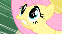 Fluttershy wings missing S1E22
