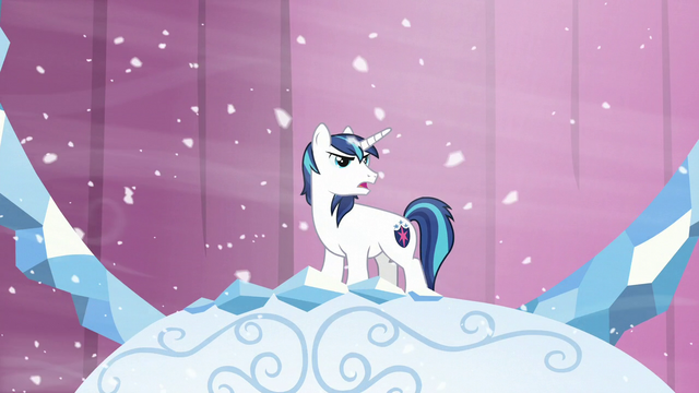 "File:Shining ""Princess Cadance has decided to evacuate the city!"" S6E2.png"