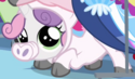 Sweetie Belle little piggy costume ID S3E4