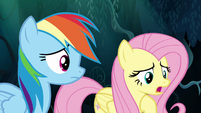 "Fluttershy ""worried that I'd fail every time"" S6E11"