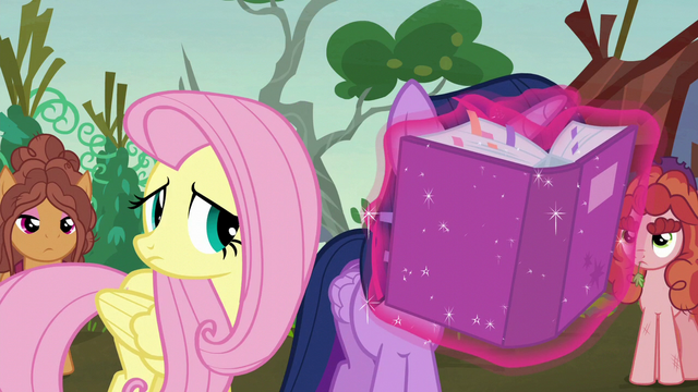 File:Twilight reads the solution portfolio closely S5E23.png