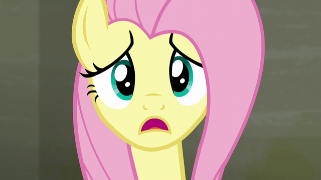 "File:Fluttershy ""I asked the raccoons to leave"" S6E9.png"