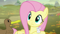 Fluttershy hears another sound S5E23