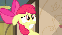 Apple Bloom becomes more worried S4E17