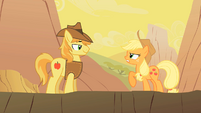 Applejack talks to Braeburn S01E21