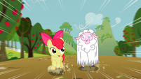 Apple Bloom running alongside a sheep S2E5