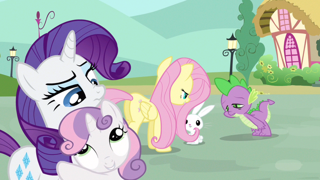 File:Rarity I believe you S3E11.png
