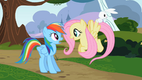 Fluttershy excited S2E07