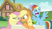 "Rainbow Dash ""don't cast spells on your friends!"" S6E21"