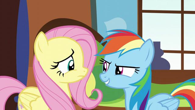 """File:Rainbow """"Tortoises don't hibernate!"""" S5E5.png"""