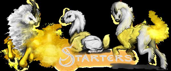 StarterBanner (2)