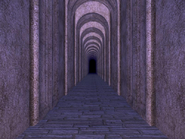 Monster Lord's Castle Passageway