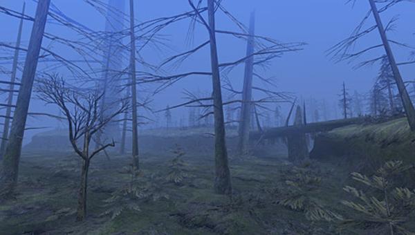 File:SwampForest.jpg