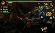 MH4U-Gypceros Screenshot 012