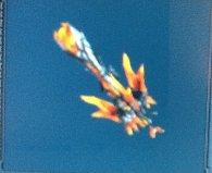 File:Guran Heavy bow gun MH3G krakencm.jpg