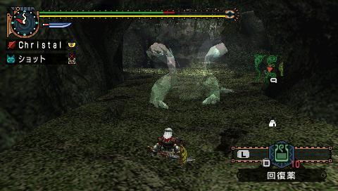 File:Chameleos half zichtbaar.jpg