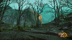 MHO-Dark Veil Forest Screenshot 001