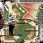 FrontierGen-Doragyurosu Icon