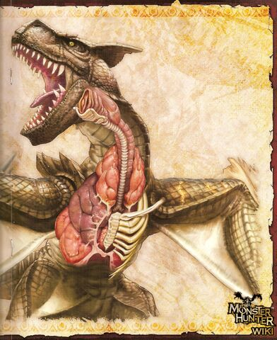 File:Black Tigrex Scan 4.jpg