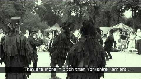 Morris Dancing Stone The Crows plus extra guitar track..