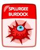 Splurgee Burdock