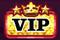 Star VIP logo