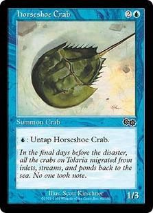 Horseshoe Crab UZ
