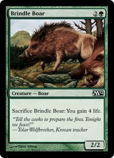 Brindle Boar M12