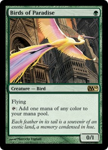 File:Birds of Paradise M10.jpg