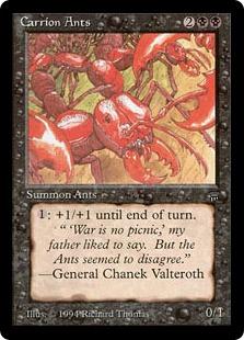 File:Carrion Ants Leg.jpg