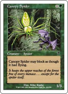Canopy spider 7E