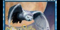 Rimefeather Owl