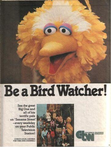 File:Bird Watcher.JPG