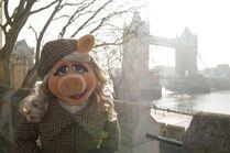 Piggy Tower Bridge