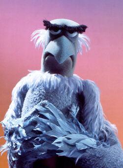 Sam Eagle